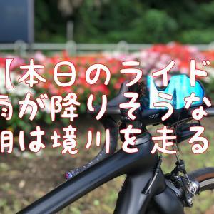 【本日のライド】雨を恐れて2日続けての境川サイクリングロードへ!