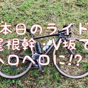 【本日のライド】久しぶりの尾根幹・V坂を雨降る前に走ってヘロヘロに(kさんと)
