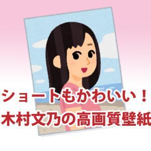 木村文乃の画像 高画質壁紙はどこにある?ショートもかわいいと評判!