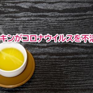 緑茶に含まれるカテキンがコロナ不活化?医科大が発表し口腔内ウイルス抑制に期待