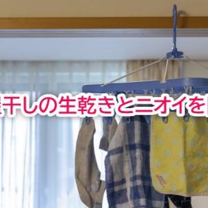 洗濯物の部屋干しで気になるニオイや生乾きを防ぐには?知っておきたいポイント