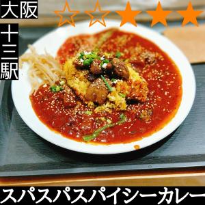スパスパスパイシーカレー(十三駅・カレー)
