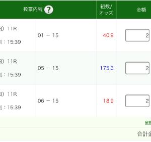 明日は阪神ジュベナイルF (G1) 2019