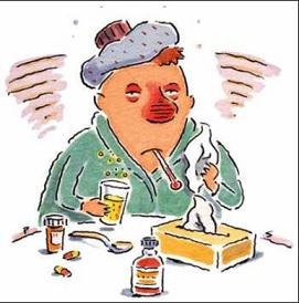フランス語の慣用表現「脳の風邪⇒ 鼻風邪」
