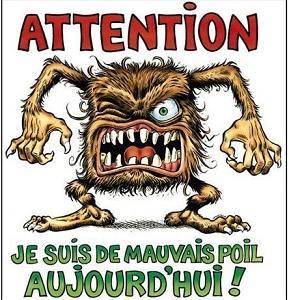 フランス語の慣用表現「悪い毛並みで⇒ 機嫌が悪い」