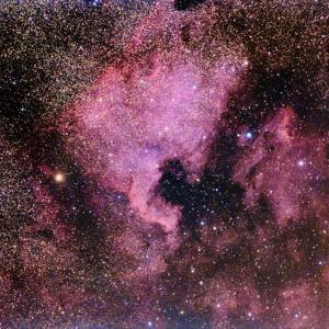 再掲>北米・ペリカン星雲
