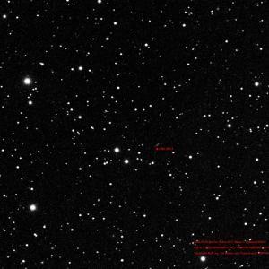 4年前小惑星テントウムシ認可