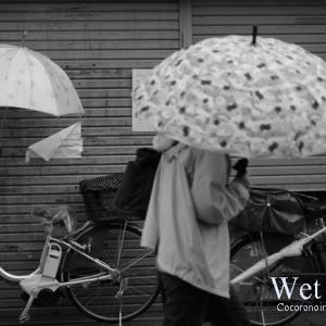 今日は朝から雨:大和高田市