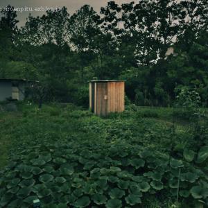 小さな小屋のある風景