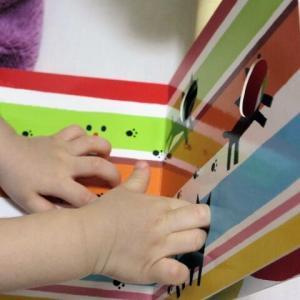 【TOP5】0歳の赤ちゃん向けオススメ絵本