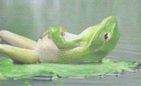 #64 ゆで蛙になっちまう