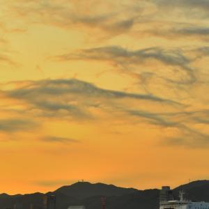 【第49回みなとこうべ海上花火大会 忘備録】 19'8/3