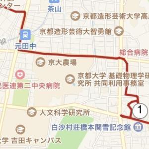 【19年度洛東 紅葉探訪記】 19'12/1