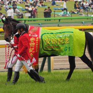 【マイルチャンピオンシップ】不利がなくても安田記念勝ててた件【感想戦】
