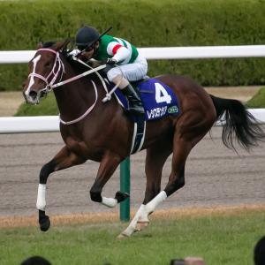【阪神JF】逃げ馬がゴール前に後方集団を千切っていく絶景【感想戦】