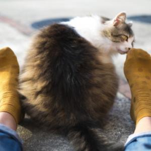 私の足汗は夏よりも冬のほうがひどくてニオイも強烈