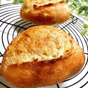 あれ?!そのパン、イーストくさい?