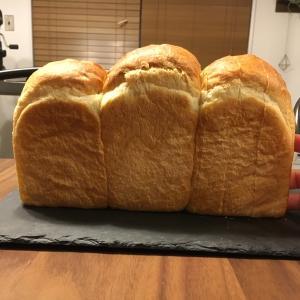 食パンが膨らまない…原因は?