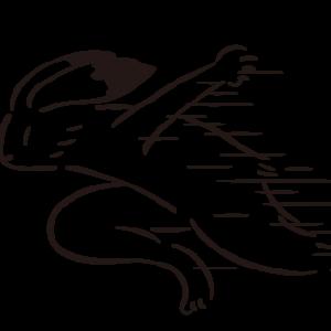 その21【マラソンを続ける為の練習③】サブスリーまでの道のり(2017)