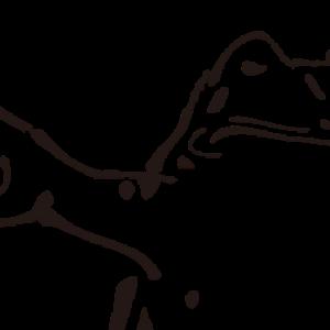 その22【LSD】サブスリーまでの道のり(2018/1/1~1/11)