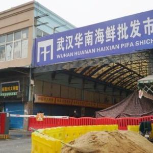 野生動物を食べる中国人たち…伝染病の温床になった違法売買現場=韓国の反応