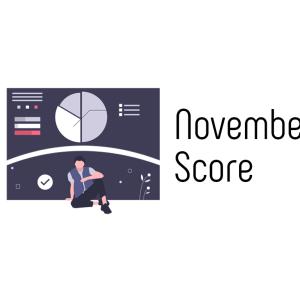 [PV・ユーザー・収益公開/先月比較] 新米ミニマリストブロガー11月成績