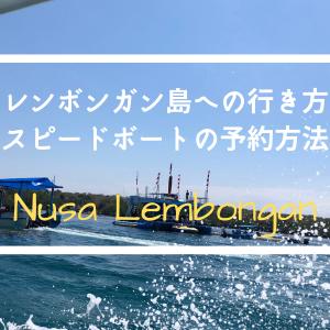 【レンボンガン島の行き方】個人手配して8歳の息子とスピードボートで行ってきました!チケットの予約方法も紹介
