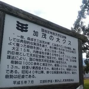 徳島県西部三好広域エリアのプチ観光案内1/2
