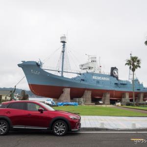 CX-3で行く海の幸と生き物に癒されるドライブ(Part2)