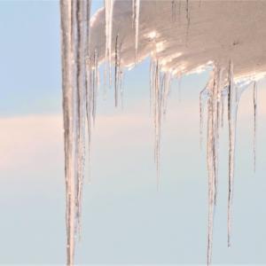 大雪 (たいせつ)  | 二十四節気 | 閉塞成冬(そらさむくふゆとなる)|  七十二候 | 歳時記 | 冬日 | 真冬日 | 鰰(ハタハタ)| 鰤(ぶり)| 事八日 | 針供養