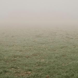 残暑の中に「涼」を求めて・・・「蒙霧升降(ふかききりまとう)」