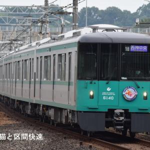 七夕列車2020~初の6000形七夕列車~