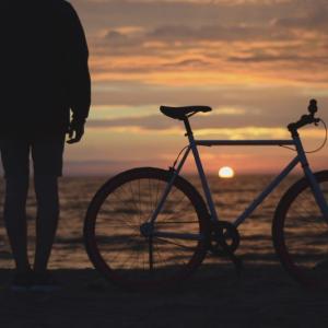 初自転車釣行で豆アジング!