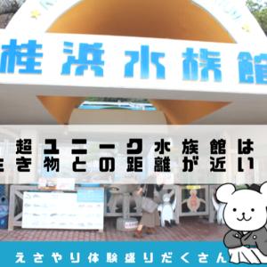 桂浜水族館の見どころ所要時間・体験レポ:生き物との距離の近さがすごい!
