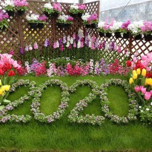 京都府立植物園~春の花に会いに