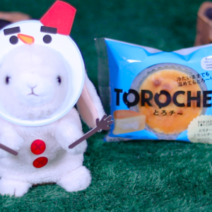 【とろチ〜 ‐とろっとチーズ‐】ローソン 11月26日(火)新発売、コンビニスイーツ食べてみた!【感想】