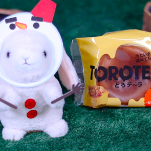【とろテ〜ラ -とろっとカステラ-】ローソン 11月26日(火)新発売、コンビニスイーツ食べてみた!【感想】