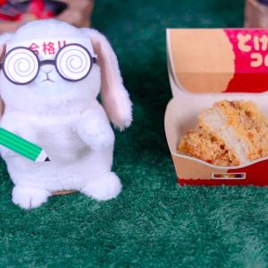 【とけコロ】ローソン 1月14日(火)新発売、ローソン コンビニ 揚げ物 食べてみた!【感想】