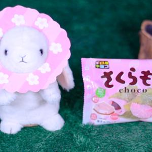 【チロルチョコ さくらもち】PRTIMESHP 1月20日(月)新発売、コンビニ スナック 食べてみた!【感想】