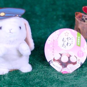 【やわもちアイス さくらもち味】井村屋 2月10日(月)新発売、コンビニ アイス 食べてみた!【感想】