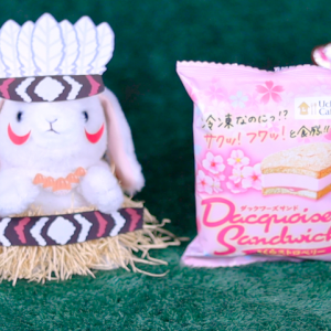 【ダックワーズサンド さくらストロベリー】ローソン 2月18日(火)新発売、ローソン コンビニ アイス 食べてみた!【感想】