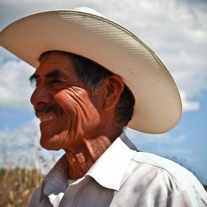 メキシコペソ(MXN)の特徴まとめ!FXスワップ取引や外貨預金の前に知っておきたい特徴まとめ