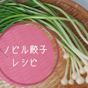 ノビル餃子レシピ|Panasonicビストロで低脂質で美味しく