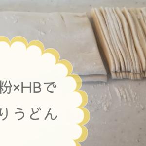 中力粉(うどん粉)を使ってホームベーカリーで手作りうどん