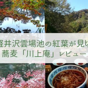 軽井沢雲場池の紅葉は今が見頃!ハルニレテラスの蕎麦「川上庵」レビュー