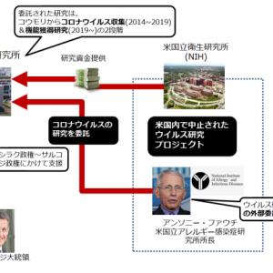 オバマ政権下における武漢ウイルス研究所へ資金援助が発覚・ファウチ所長へ疑惑の目