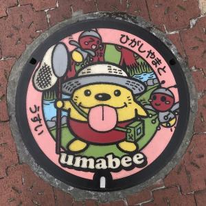 【東京都】東大和市のマンホール 4