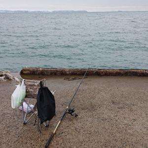 海釣り始めました。