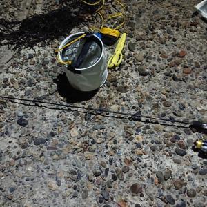 海釣り アジングなのにチヌ(黒鯛) こそ錬 岩和田漁港