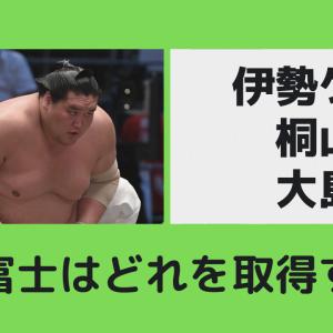 照ノ富士は親方になれるのか?株はどうなる?桐山?大島?